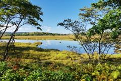 空の色を映す池塘
