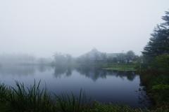 大賀ホールは霧の中