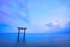 黄昏の白鬚神社