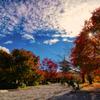 秋の思い出_3