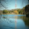 三ッ池公園 散歩