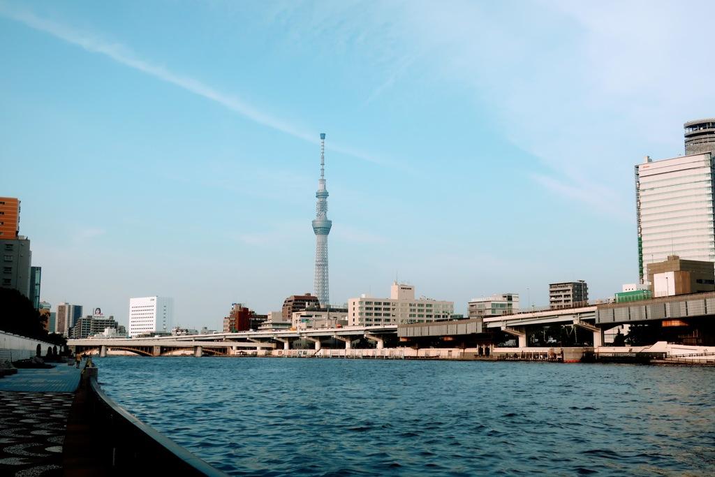 隅田川から