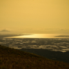 黄金の八郎潟干拓地