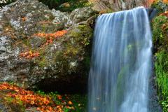 秋保ナイトミュージアム 庭園の名もなき滝
