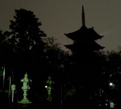寺 夜景 カット.ver