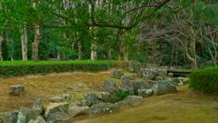 小川・風景
