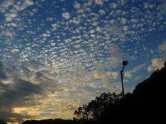 空雲(秋の夕方)