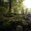 雨上がりの和歌山城 西の丸庭園