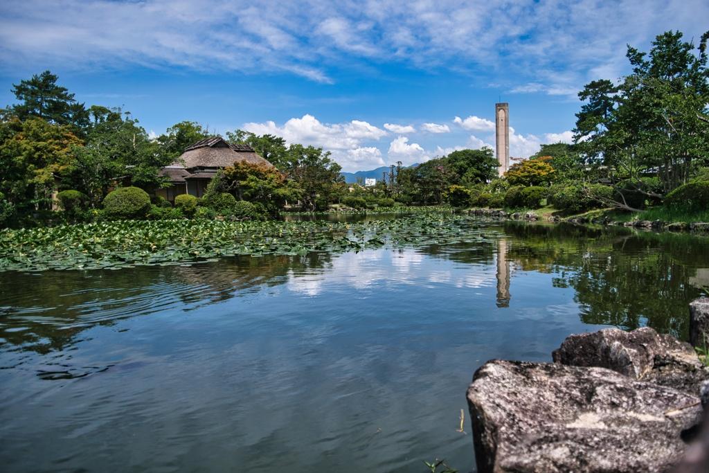 神野公園_2021_0716_4