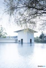 鈴木大拙館ー2(思索空間、水鏡の庭)