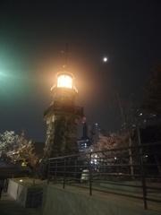 朧月夜の桜と灯籠