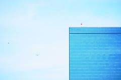 ビル・飛行機・鳥