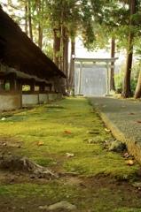 神社にある色(秋)