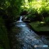 山中水源2