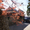 上田城と紅葉色づく