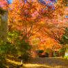 神蔵寺 2020秋