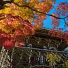 秋色の善峯寺