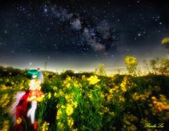 星と花に祝福を その弐