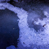 凍る川 5