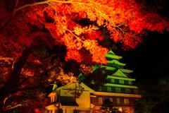 秋の烏城桃源郷