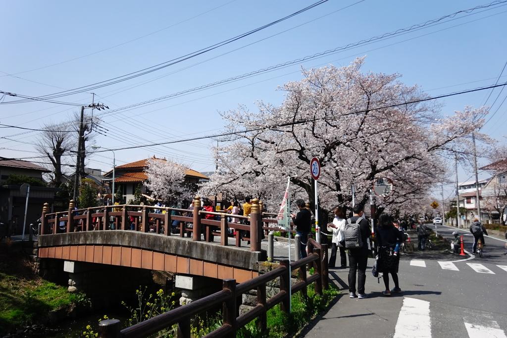 川越氷川神社裏の氷川橋にて2021年3月26日