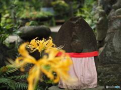 追想 彼岸花の咲くころ常泉寺7