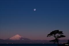 満月の夜が明ける