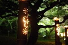 栗林公園の灯り