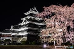 国宝松本城 夜桜会より