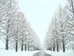 映える〜ぅ 前の雪景色!