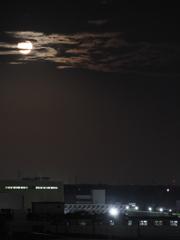 近所の中秋の月