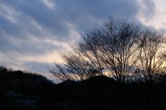 里山の夕暮れ