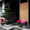 玄関花飾り