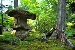 日本庭園〜三千院②