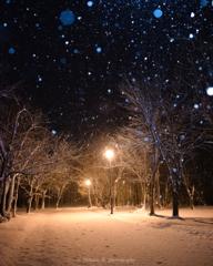 雪降る公園