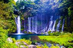 自然の豊かさ