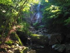 光と緑と滝