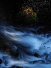 湧水の流れ