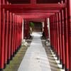 七渡神社の鳥居