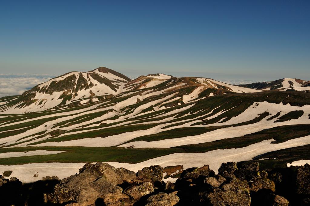 ゼブラ雪渓