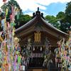 竈門神社 七夕祭り