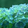 淡いブルー