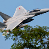 F-15~木々をかすめて~