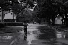 雨、降ってます