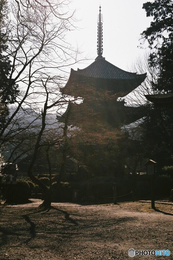 冬の三重塔