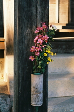 夕暮れの供花