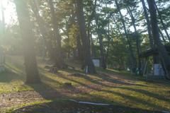 キャンプ場での風景