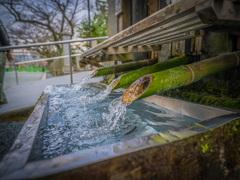 水の躍動感