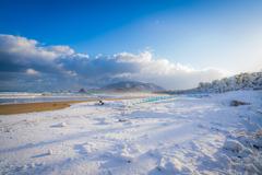雪の海岸線