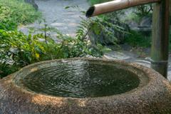 閑話休題の2 清澄庭園の蹲(つくばい)